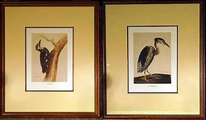 Vintage Pair Reproduction Bird Prints by Charles Collins ...