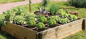 Carre De Jardin Potager : r ussir son carr potager parlons jardin le blog ~ Premium-room.com Idées de Décoration