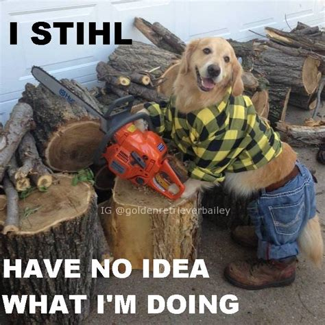 Chainsaw Meme - chainsaw meme saw meme by smoshlover6 on deviantart pin saw memes 2656 results on