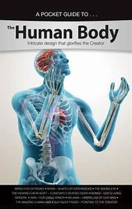 Human Body Pocket Guide  Pocket Guide