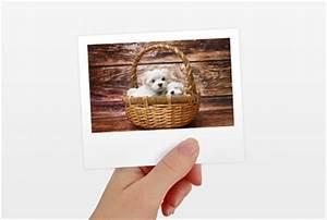Polaroid Bilder Bestellen : farbstarke und detailgenaue foto entwicklung ~ Orissabook.com Haus und Dekorationen