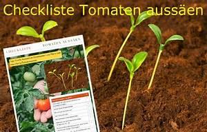 Haushalt Organisieren Checkliste : checkliste tomaten auss en garten tomaten pflanzen pinterest ~ Markanthonyermac.com Haus und Dekorationen