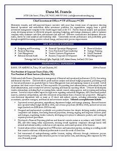 cfo sample resume vp of finance sample resume With finance resume examples