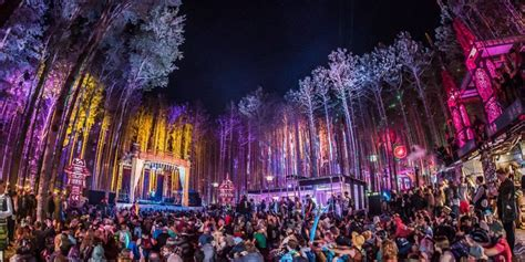 Man Missing From Electric Forest   Mix 247 EDM