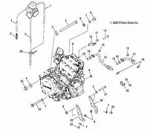 Polaris Sportsman 500 Fuel Line Diagram