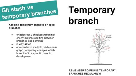 branch release branches are always best free home