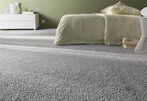 Nettoyeur Vapeur Tapis : comment nettoyer son tapis ou sa moquette avec un ~ Melissatoandfro.com Idées de Décoration