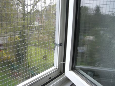 Katzennetz  Katzengitter Für Fenster  Katzennetze Nrw