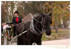 Lamplight tours at the kern county museum bakersfield for Lamplight tours bakersfield