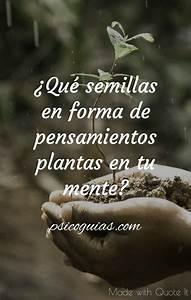 U00bfqu U00e9 Semillas En Forma De Pensamientos Plantas En Tu Mente
