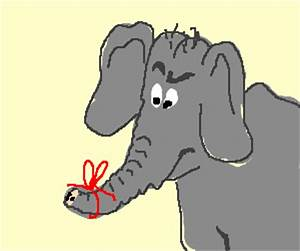 An elephant forgets to never forget.
