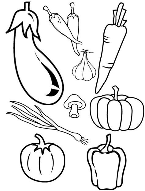 types  cornucopia vegetables coloring page kids play color