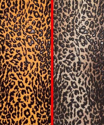 animal patterns ceramic tile by settecento animal tiles