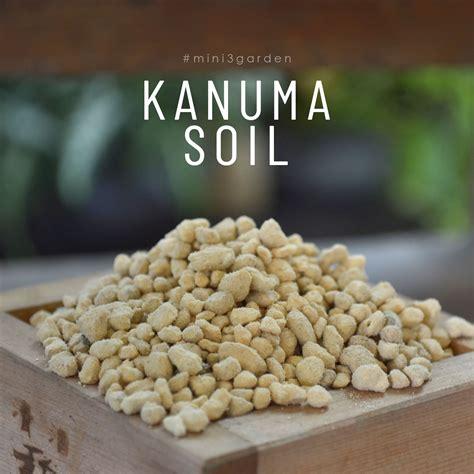 #ดินญี่ปุ่นสีเหลือง #ดินคานูมะ #KanumaSoil ใช้โรยนหน้า ...