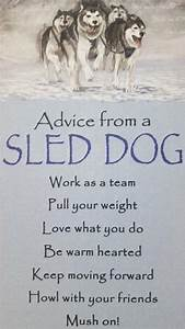 Advice from a S... Dog Sledding Quotes