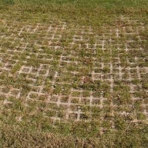 Grass Paver Turfstone