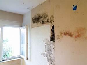 Feuchtigkeit In Der Wand Was Tun : emejing was tun bei schimmel an der wand pictures ~ Sanjose-hotels-ca.com Haus und Dekorationen