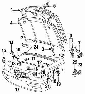 Volkswagen Jetta Hood  Oem  Group  Components  Body