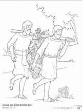 Joshua Caleb Coloring Pages Named Bible Printable Getcolorings Getdrawings sketch template