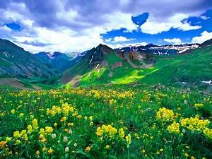 Green Mountain Meadow - Other & Nature Background ...