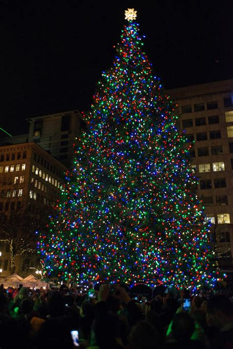 oregon ducks christmas lights photos 2016 portland tree lighting at pioneer square kval