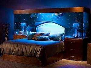 Cool Fish Tank Bed For Luxurious Contemporary Bedroom ...