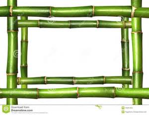 Bamboo Borders and Frames