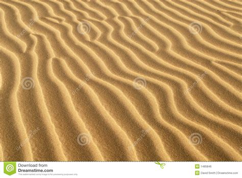 ridges of sand formed in sand dune image of