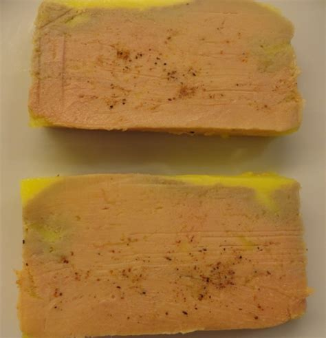 cuisine basse temperature philippe baratte terrine de foie gras mi cuit aux épices d épices cuisson basse température blogs de