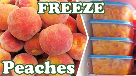 how to freeze with fruit fresh how to freeze peaches freezing peaches fresh peach fruits frozen fruit and vegetables