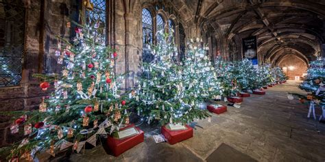 chester cathedral christmas tree festival in pictures