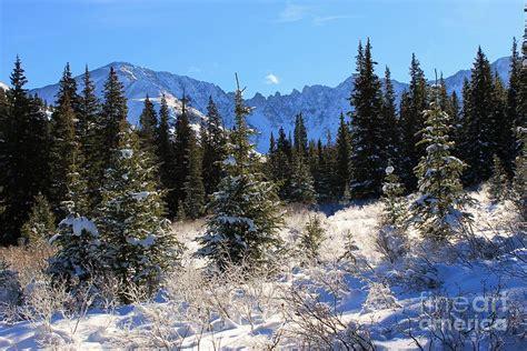 Tranquil Mountain Scene Photograph By Tonya Hance