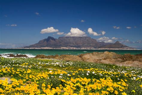 table mountain cape town south africa table mountain cape town tips for your visit to south africa