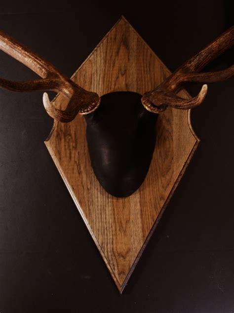 bear scents antler mount kit outfitter elk bear scents