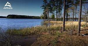 Best Trails in Harris Lake County Park - North Carolina ...