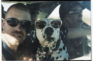 Happy 45th Birthday, Bradley Nowell | thenous