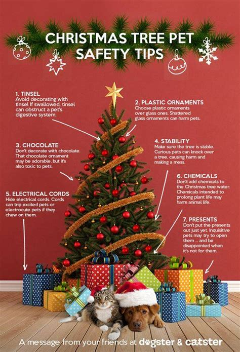 christmas tree pet safety tips stay pawsitively safe