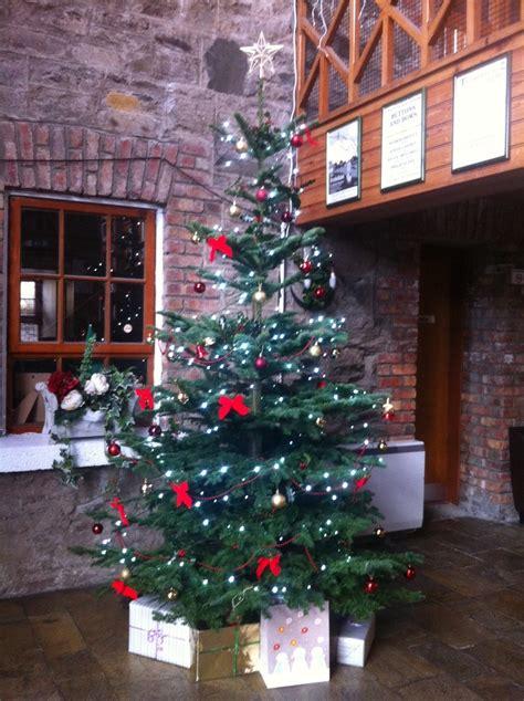 christmas tree 2014 tullyarvan mill