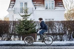 Welche Bäume Darf Man Nicht Fällen : welche b ume darf ich auf meinem grundst ck f llen ibb immobilien berlin brandenburg ~ A.2002-acura-tl-radio.info Haus und Dekorationen