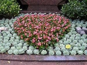 Welche Blumen Blühen Im Winter Draußen : welche grabbepflanzung im sommer ~ Watch28wear.com Haus und Dekorationen