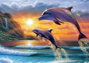 fond ecran dauphin