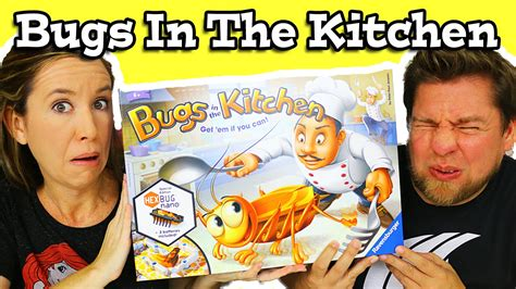 bugs in the kitchen bugs in the kitchen