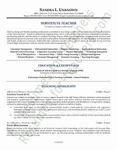 Resume Examples In Spanish Resume Ixiplay Free Resume