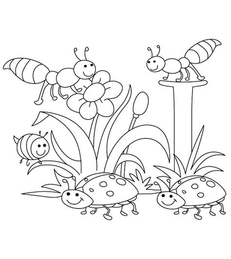 top   printable spring coloring pages