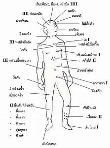 Pictures  Skin Assessment Body Diagram
