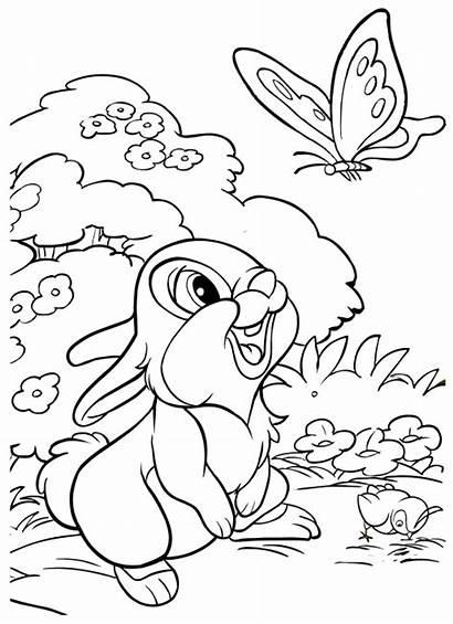 Bambi Colorare Immagini Thumper Coloring Disegno Tamburino