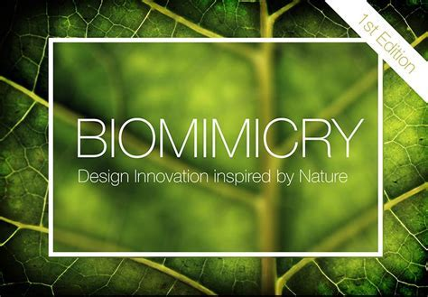 Call for Submission   BIOMIMICRY   Architecture Lab