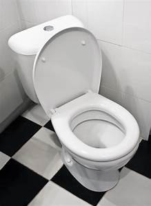 I U2019m Not Going To Put The Toilet Seat Down  U2022 The Havok Journal