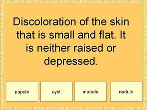 Student Survive 2 Thrive  Free Medical Terminology Practice Test  Skin Lesions