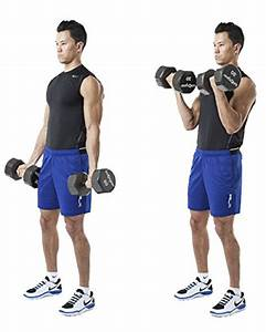 Dumbbell Exercises Workout Poster - Now Laminated